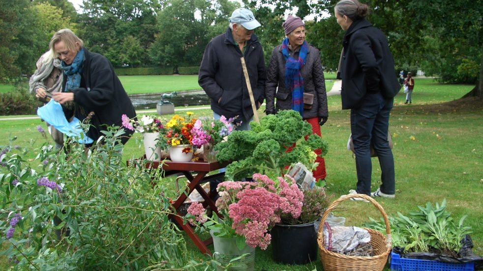 Plantebyttemarked