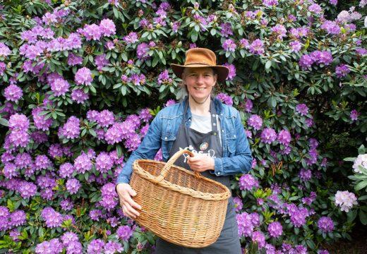 Grøn guide: Glæden ved den nære natur er en vigtig del af vores hverdag